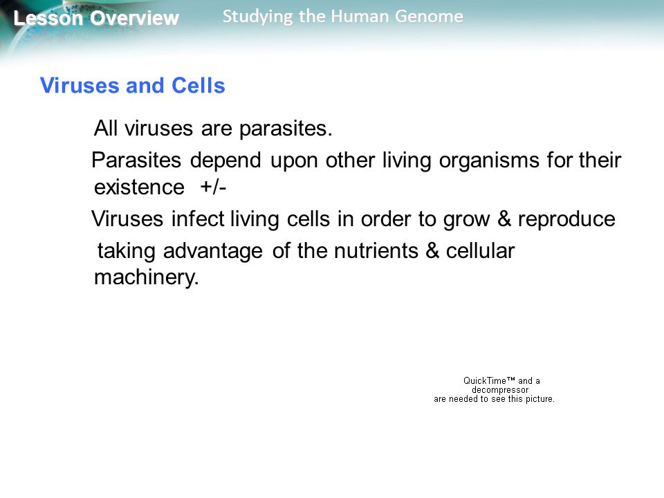 Viruses and Cells All viruses are parasites. Parasites depend upon other living organisms for their existence +/-