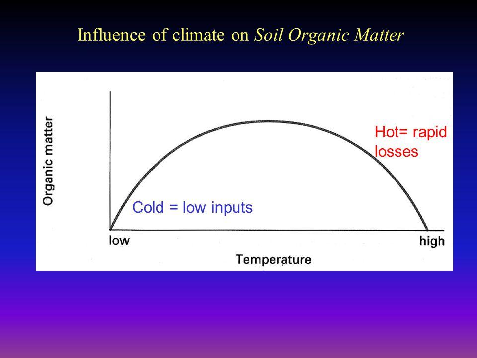 The master horizons o a e b c r organic horizon on the for Soil organic matter pdf