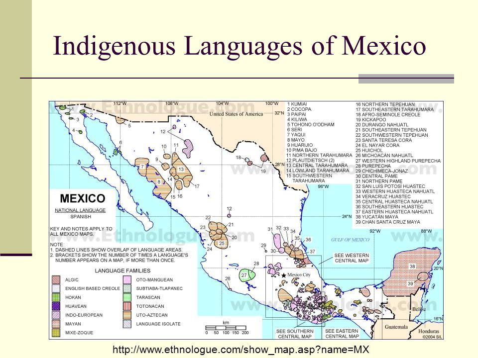 Mesoamerican Indigenous People Today ppt video online download