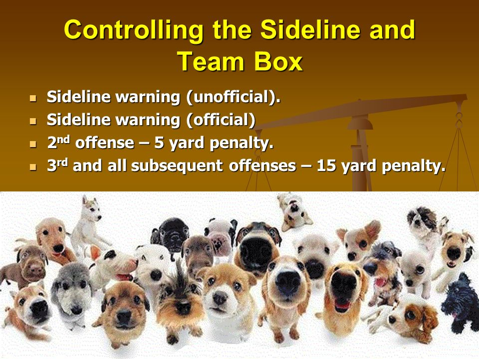 Controlling the Sideline and Team Box