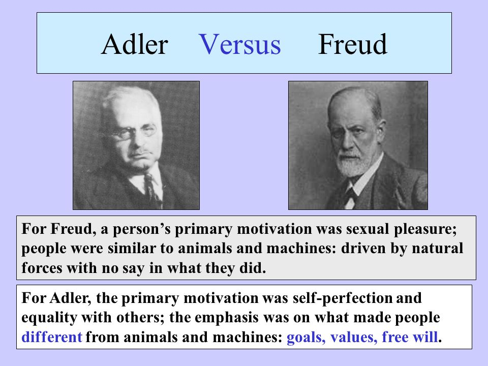 freud adler Adler vs freud who is adler and who is freud alfred adler, an austrian medical doctor and psychotherapist, turned out to be closely linked to sigmund freud, the founder of psychiatry who popularized theories of repression, defense mechanism and the unconscious mind.