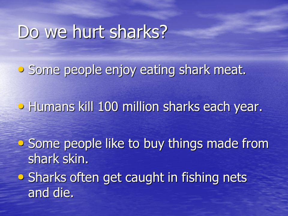 Do we hurt sharks Some people enjoy eating shark meat.