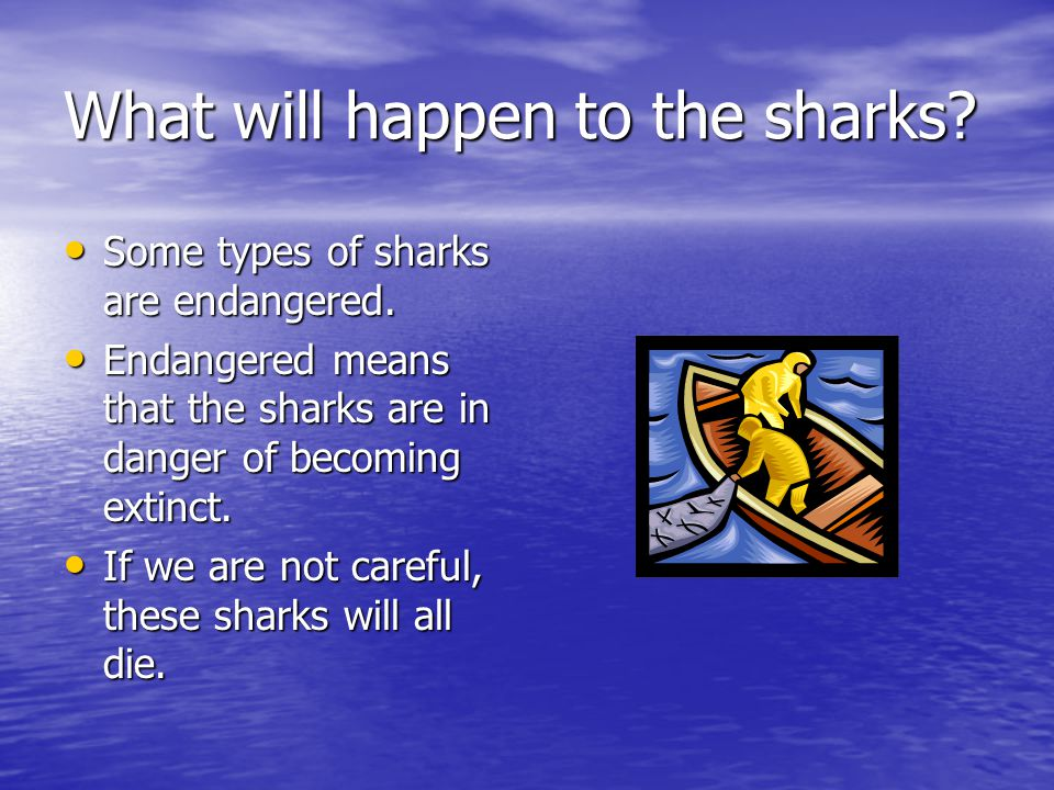 What will happen to the sharks