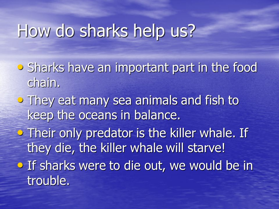 How do sharks help us Sharks have an important part in the food chain. They eat many sea animals and fish to keep the oceans in balance.