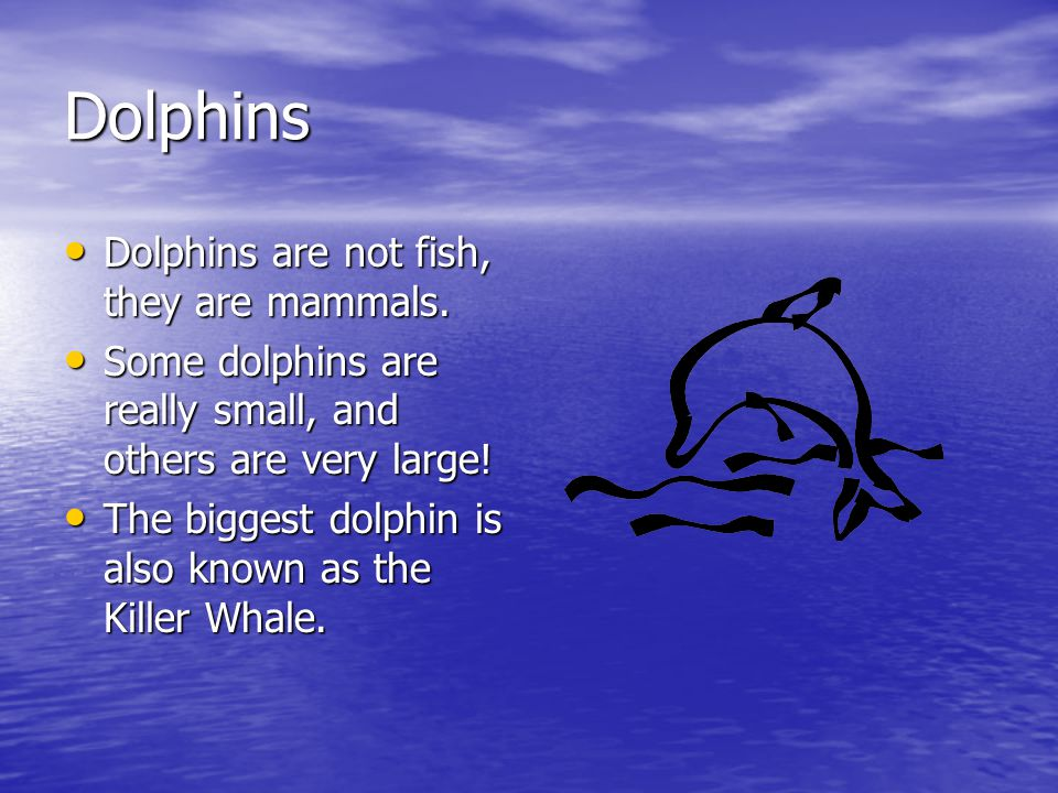 Dolphins Dolphins are not fish, they are mammals.