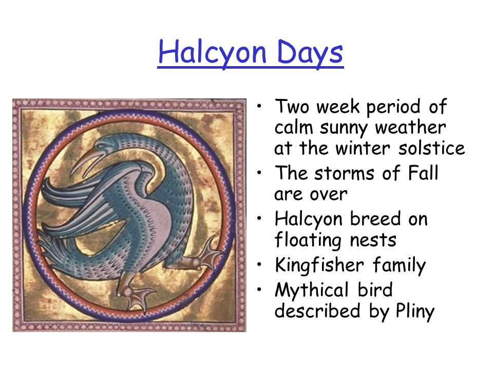 Halcyon Days Two week period of calm sunny weather at the winter solstice. The storms of Fall are over.