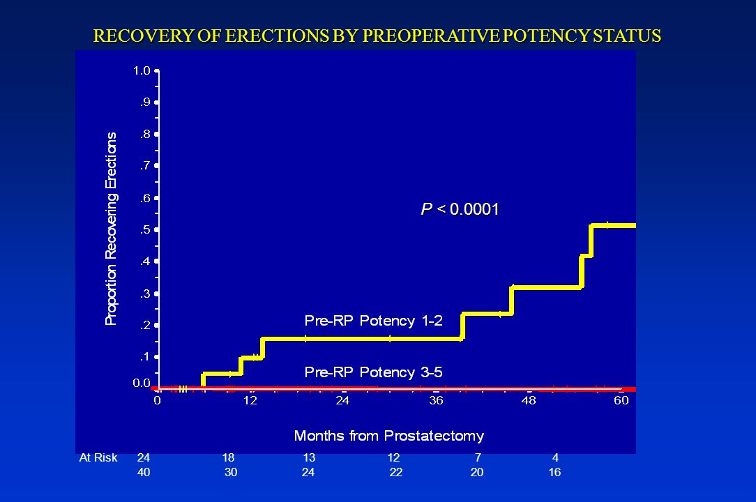 RECOVERY OF ERECTIONS BY PREOPERATIVE POTENCY STATUS