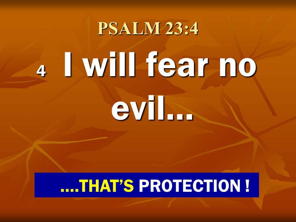 PSALM 23:4 4 I will fear no evil… ….THAT'S PROTECTION !