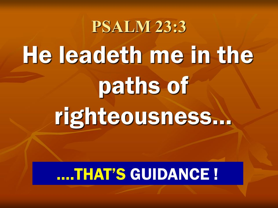 He leadeth me in the paths of righteousness…