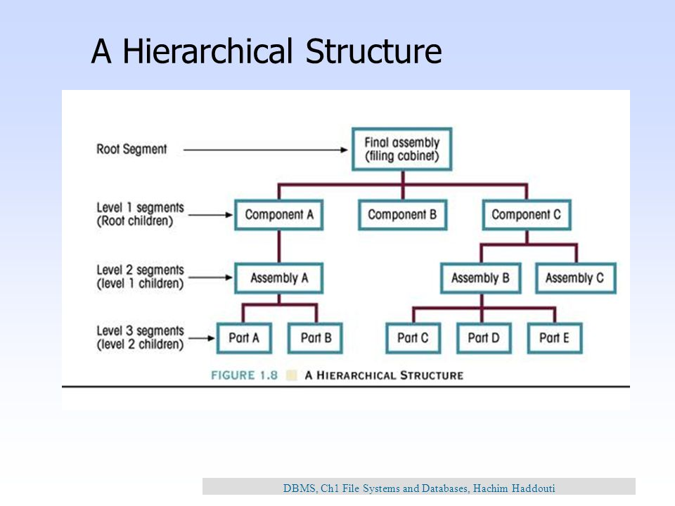 advantages of hierarchical databases What are the advantages and disadvantages of using relational models in a database id like 3 answers for advantages and 3 for disadvantages if possible.