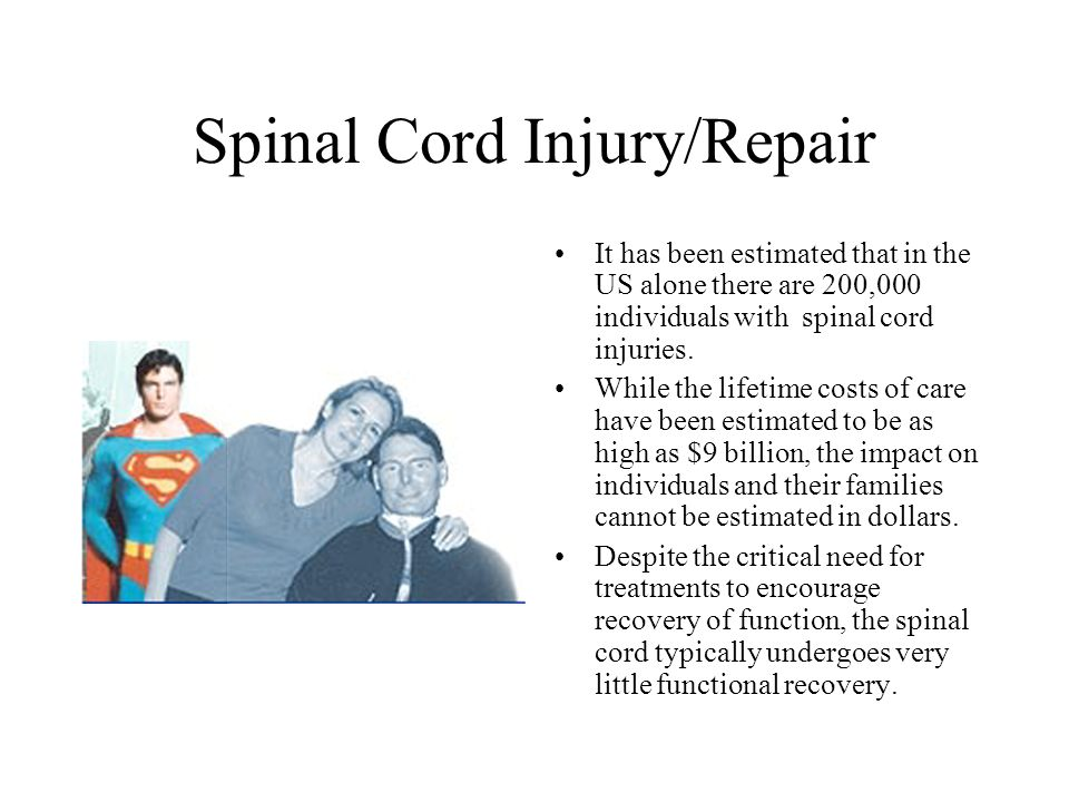 uncovering ways to repair spinal cord injuries Until now the fact was that nerves, once damaged, were beyond repair therapy following an injury to the spinal nerves was usually devoted to maintaining and strengthening the muscles that were not effected rumors of some miracle therapy have spotted the news but they always seemed many years away and stuck in the mire of politics over stem.