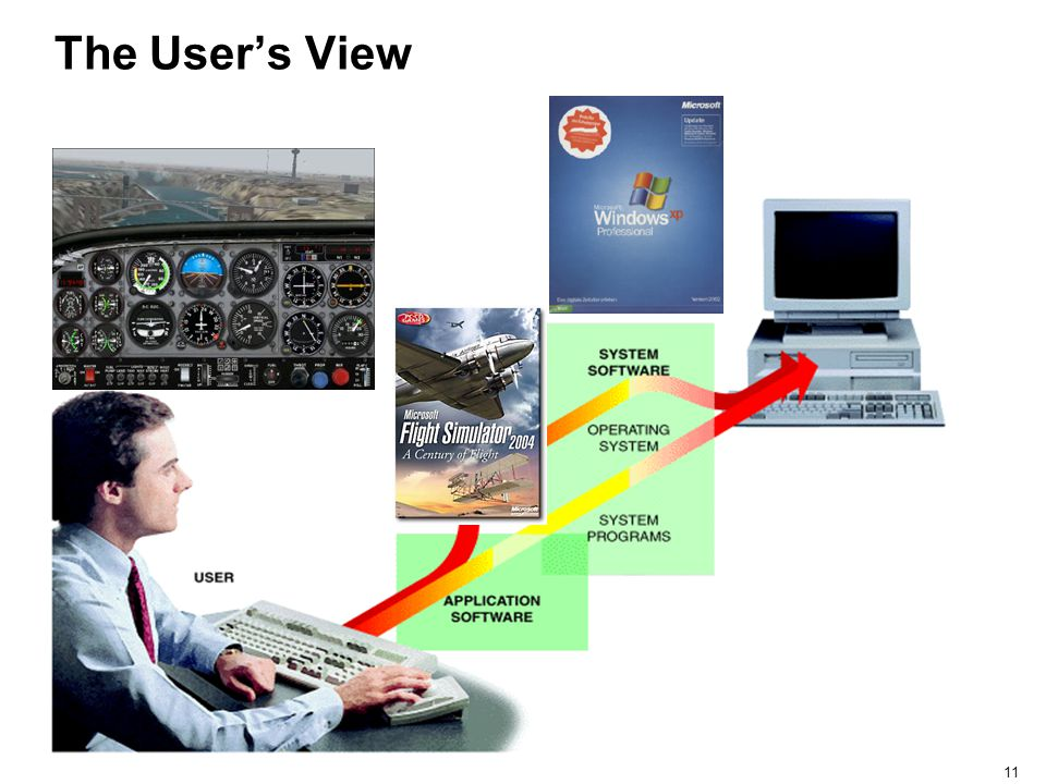 The User's View