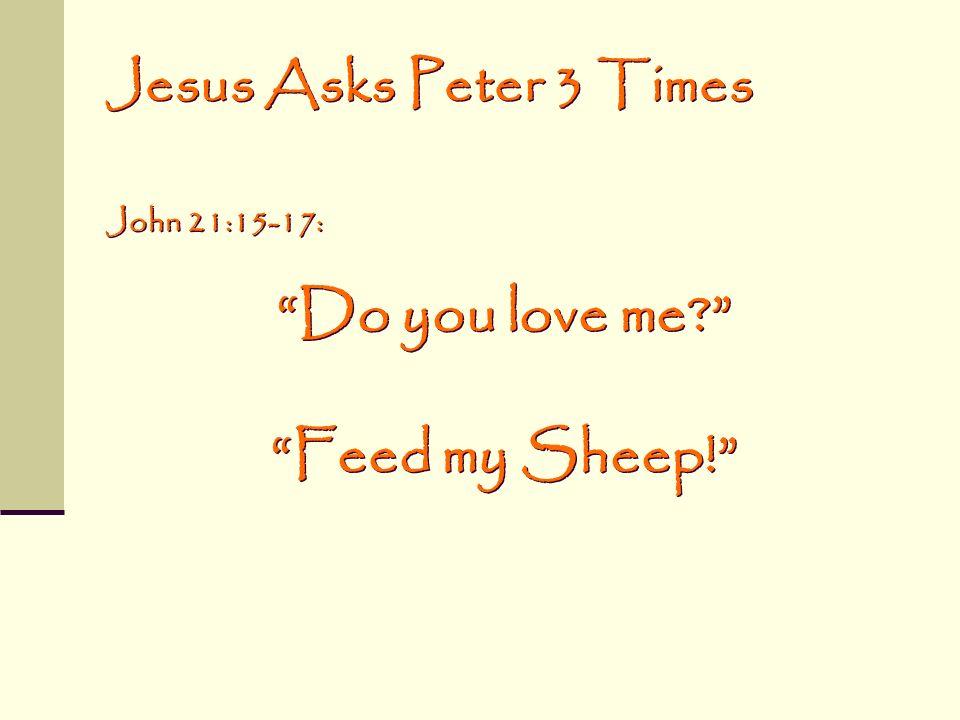 Do you love me Feed my Sheep!