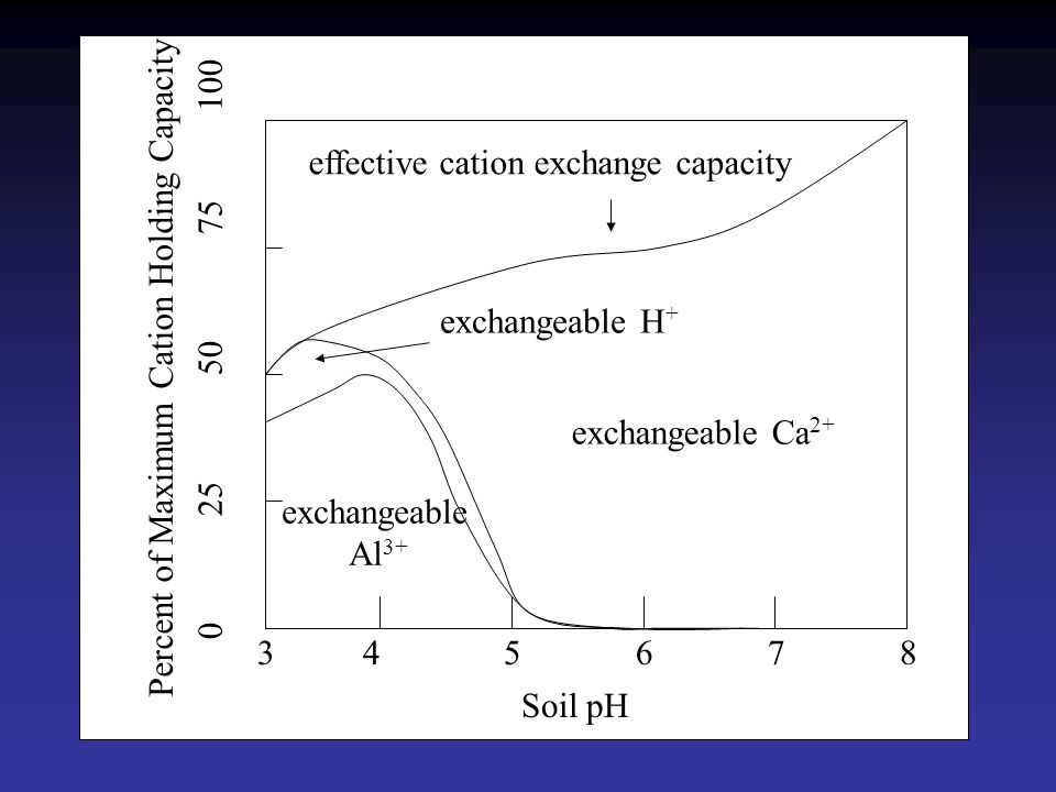 cation exchange capacity of soil pdf