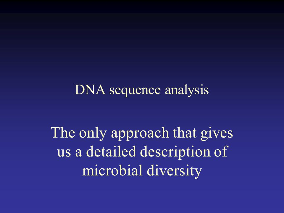 microbial diversity This book offers the first comprehensive, in-depth treatment of microbial diversity for undergraduate and graduate students using a global approach, microbial diversity illustrates the.