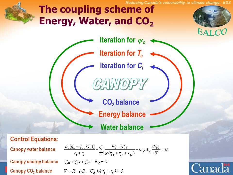 The coupling scheme of Energy Water and CO2  sc 1 st  SlidePlayer & EALCO - a model for climate impact analysis of ecosystems - ppt ...