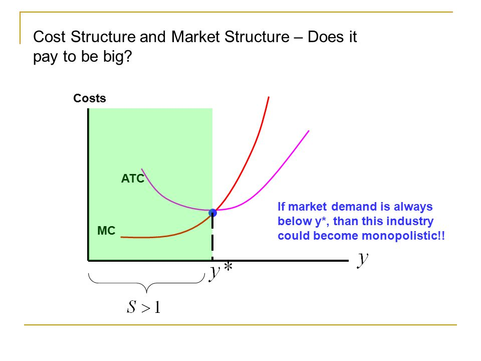market and cost structure Software industry cost structure in the software industry, although competition prevails, many companies offer niche products and services as a result, they don't compete with each other directly.