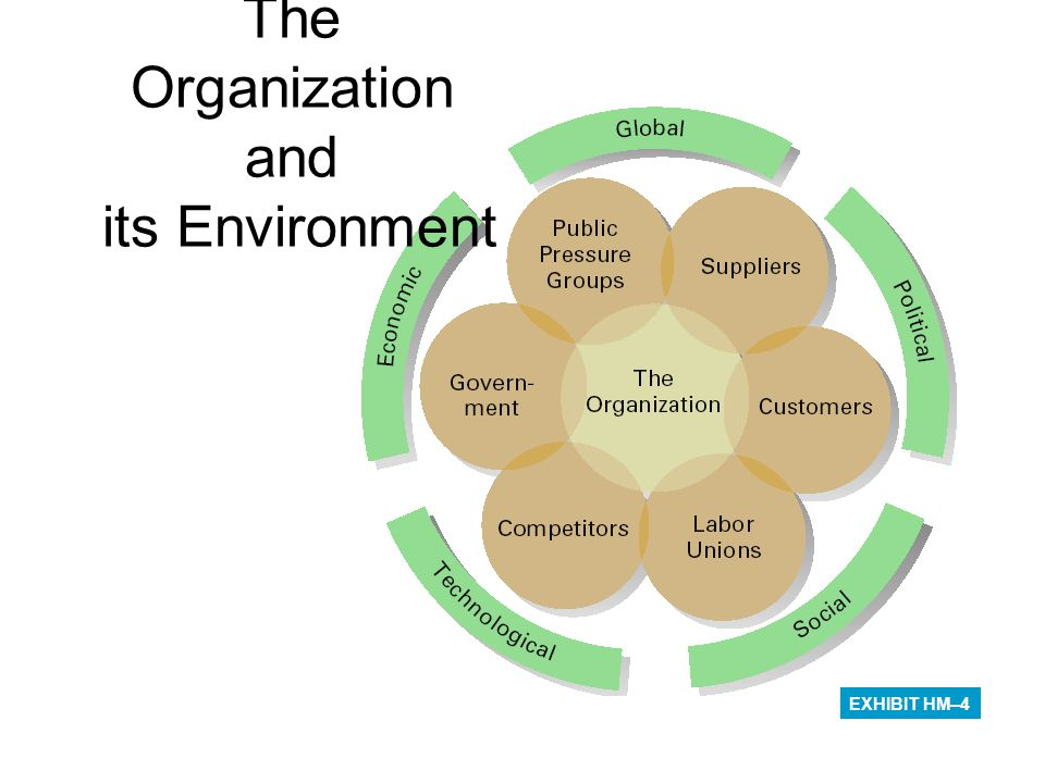 The Organization and its Environment