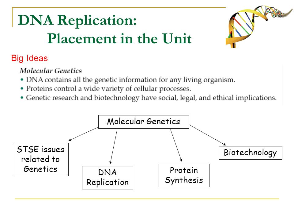 An overview of the concept of genetics in medical research and terminology