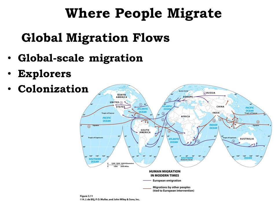 Where People Migrate Global Migration Flows Global-scale migration