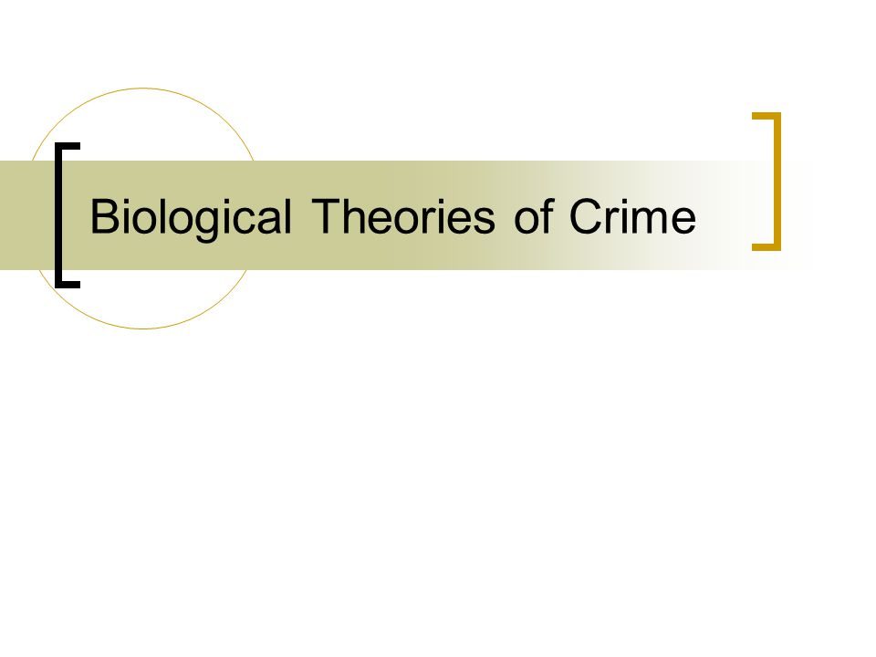 biological theory of crime essay Theories of crime research paper topic created in part as a response to biological theories that focused on an research papers examine the study of crime that.