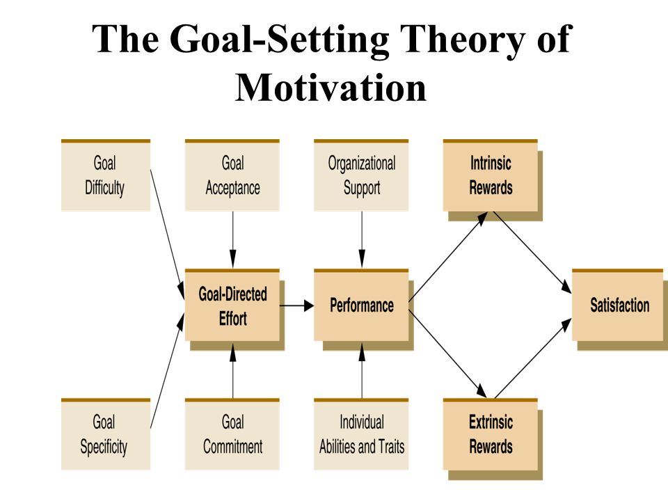 goal setting theory examples Goal-setting theory refers to the effects of setting goals on subsequent performance researcher edwin locke found that individuals who set specific, difficult goals performed better than those who set general, easy goals.