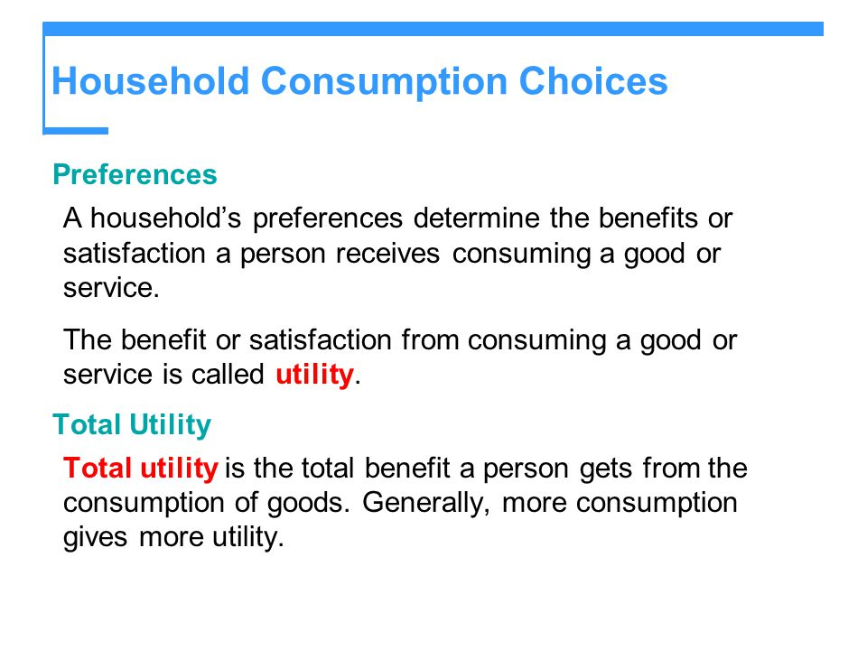 Household Consumption Choices