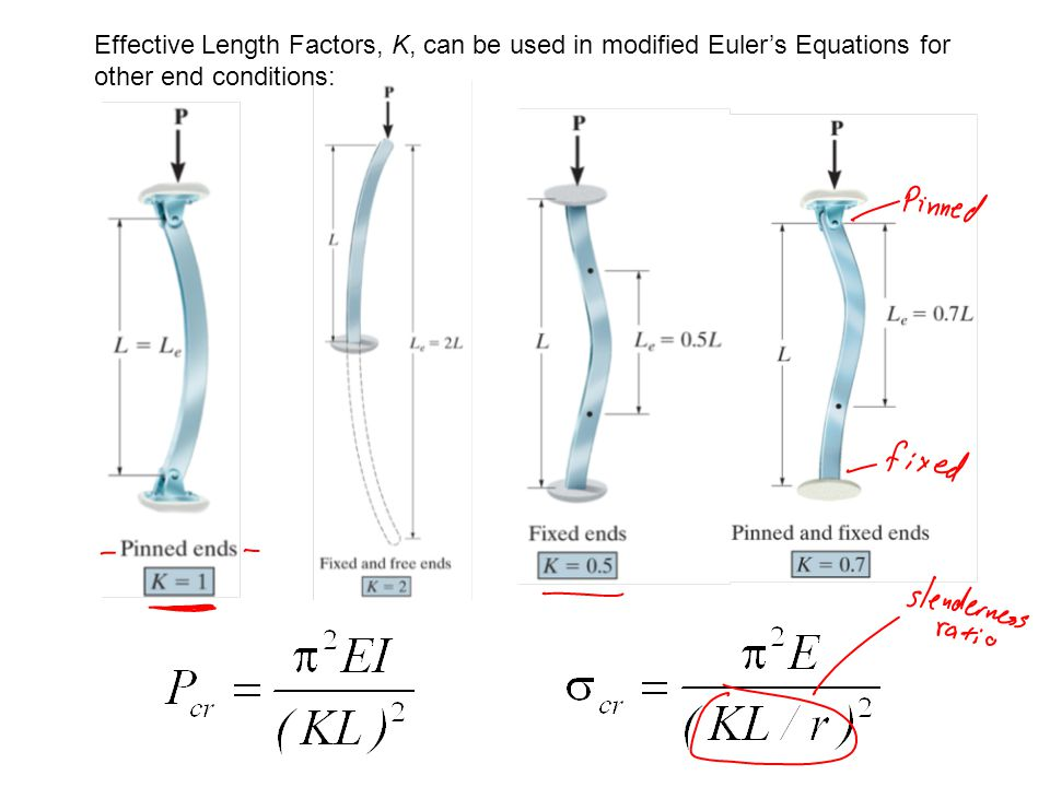 lab experiment to explore and verify the euler buckling equation