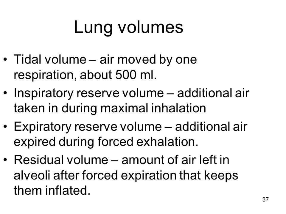 Lung volumes Tidal volume – air moved by one respiration, about 500 ml.