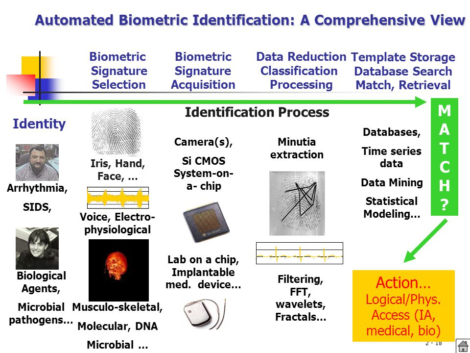 lab on a chip template - biometric systems adapted from b cukic ppt video online