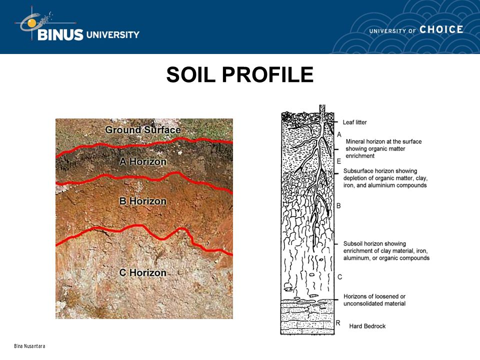 Topic 1 introduction to soil mechanic ppt download for Soil particles definition