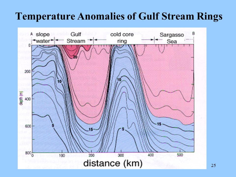 Temperature Anomalies of Gulf Stream Rings