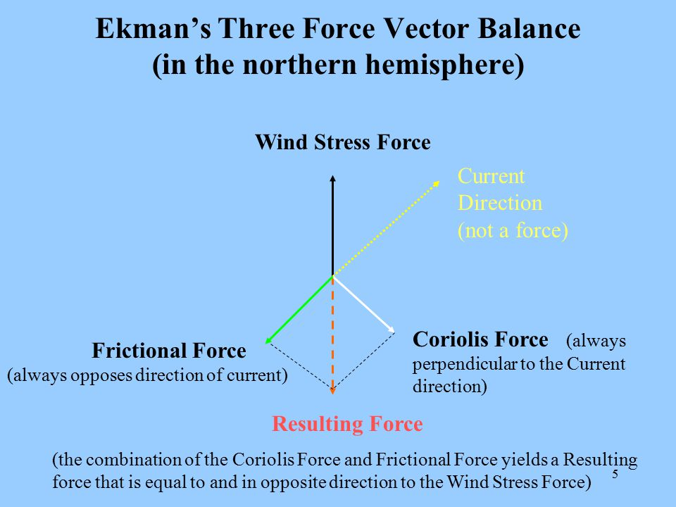 Ekman's Three Force Vector Balance (in the northern hemisphere)