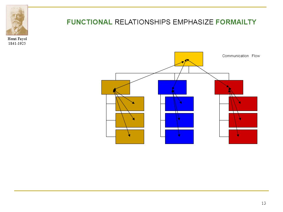 FUNCTIONAL RELATIONSHIPS EMPHASIZE FORMAILTY