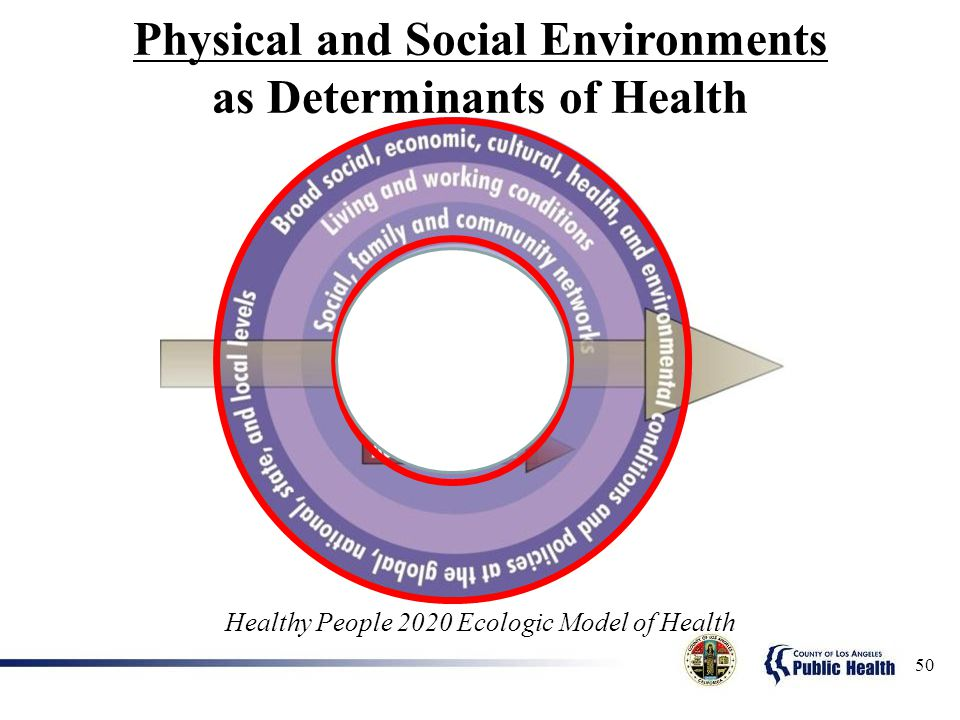 Physical and Social Environments as Determinants of Health