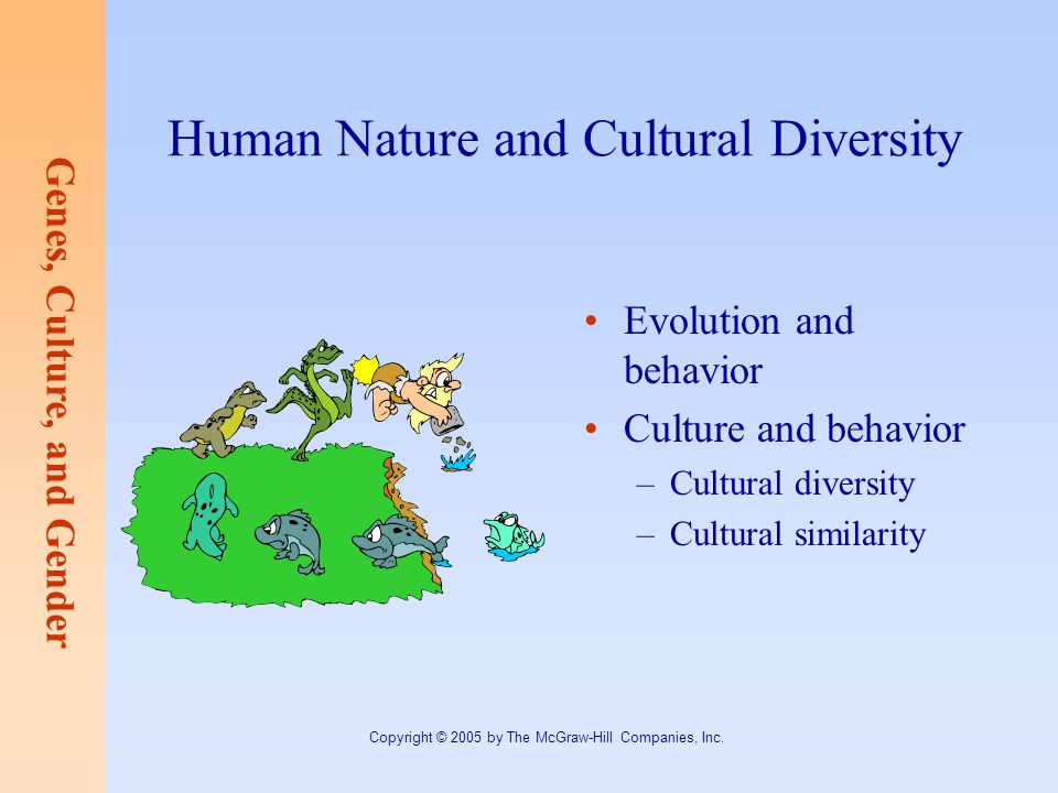 culture and human behavior Individual behavior in organization human behavior is complex and every individual is different from another, the challenge of an effective organization is in successfully matching the task, the manager and the subordinate.