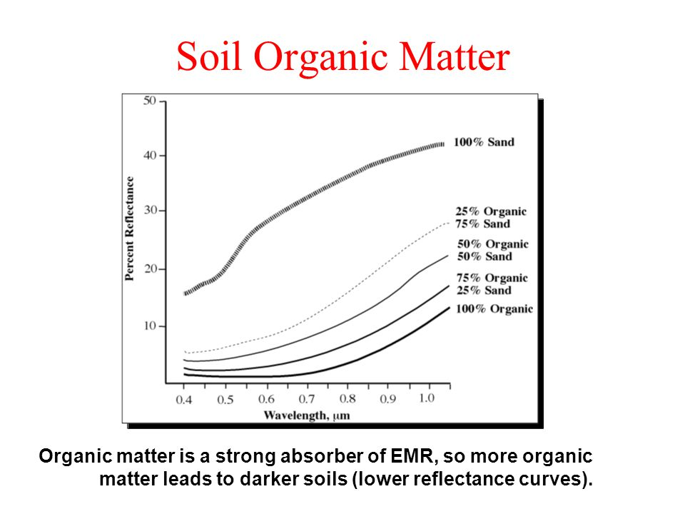 Energy interactions in the atmosphere ppt video online for Soil organic matter