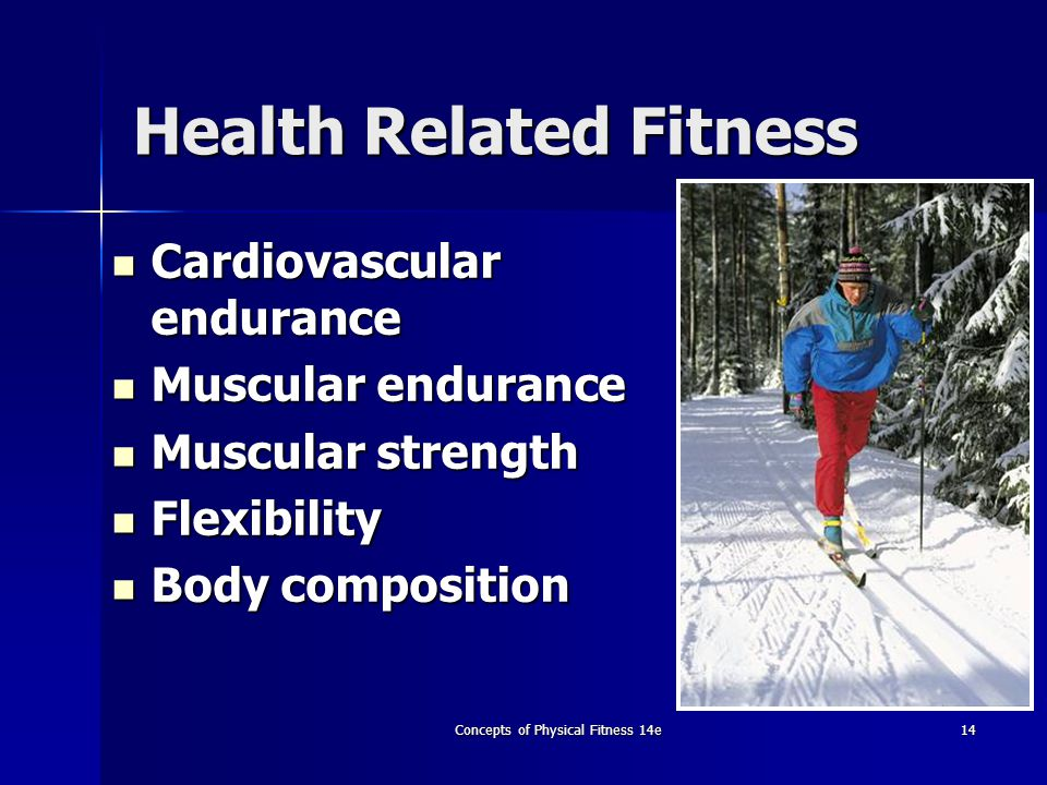 five components of health related fitness That's the basic concept of the 5 components of physical fitness for some examples of health related components of fitness and how they relate to physical.