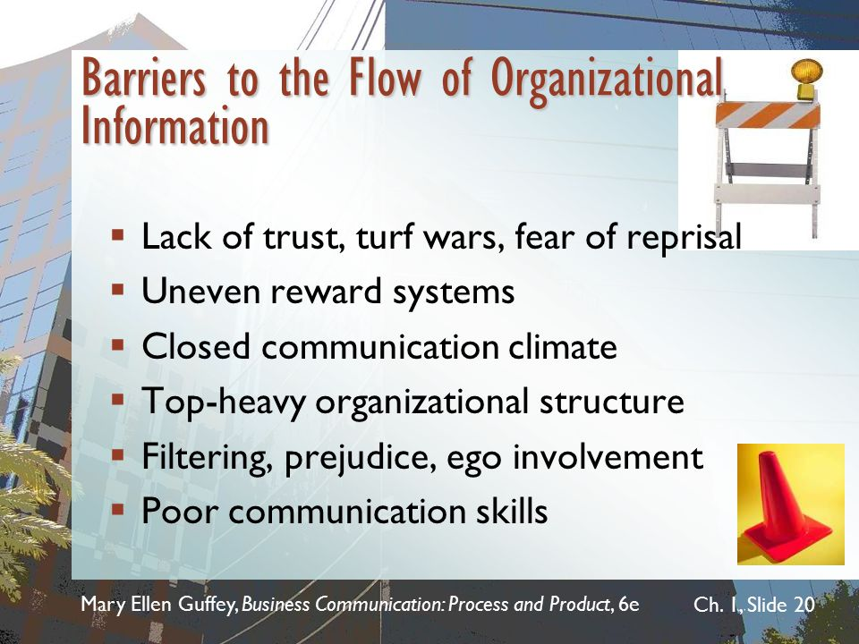 Barriers to the Flow of Organizational Information