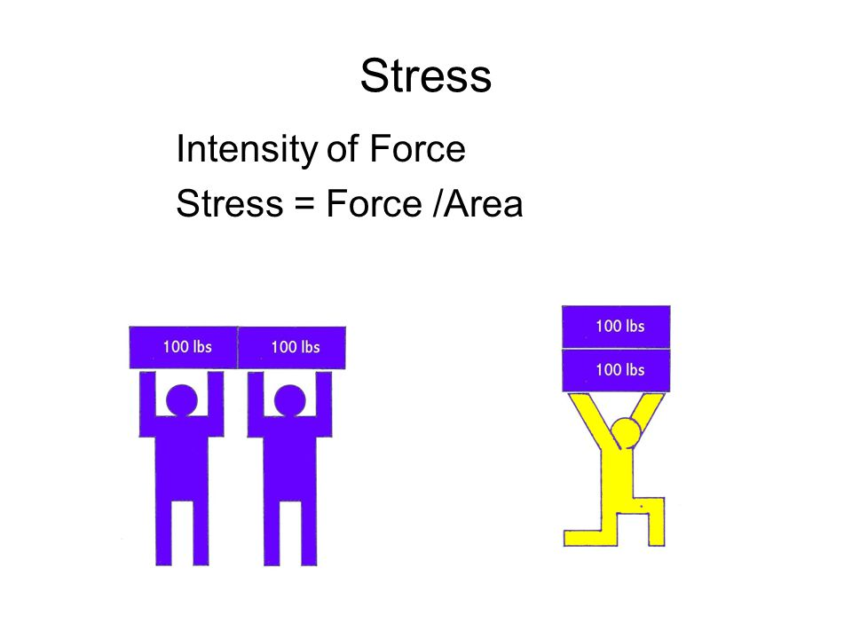 Stress Intensity of Force Stress = Force /Area