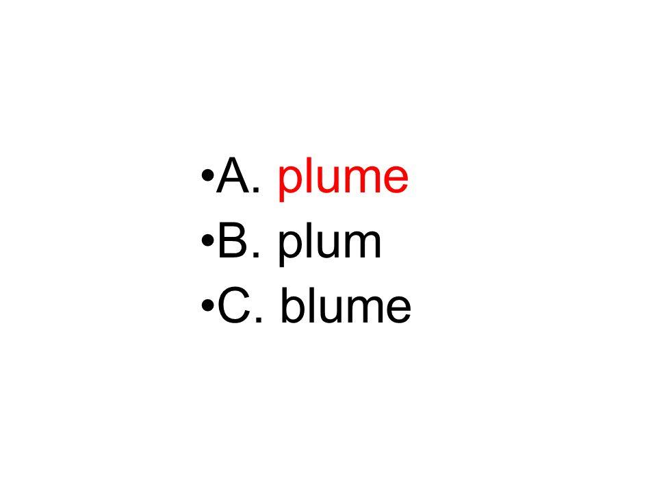 A. plume B. plum C. blume