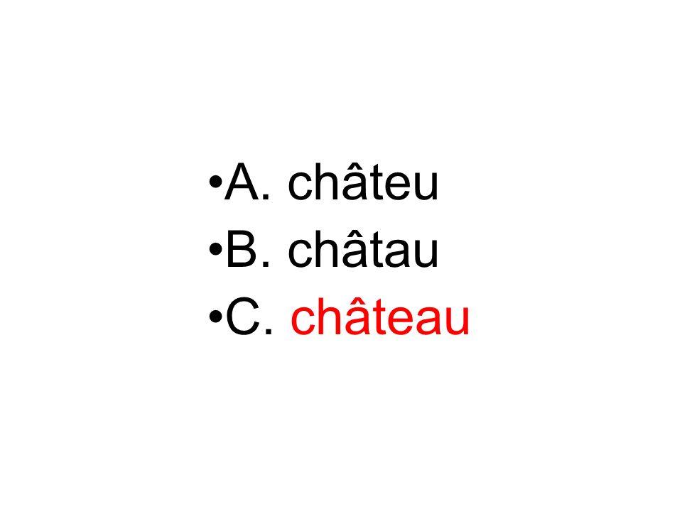 A. châteu B. châtau C. château