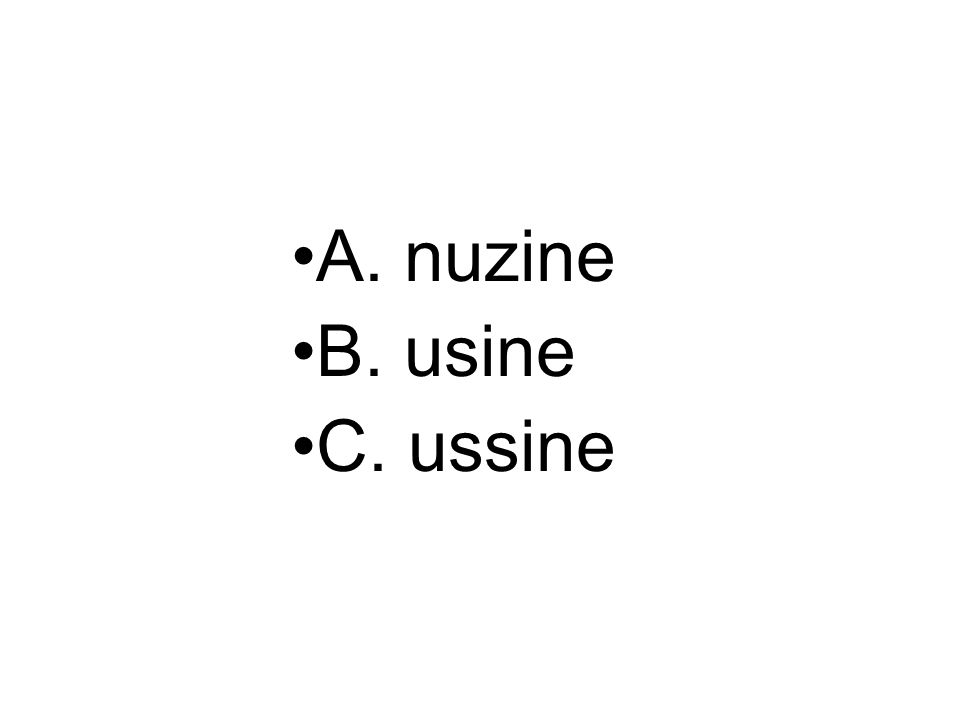 A. nuzine B. usine C. ussine