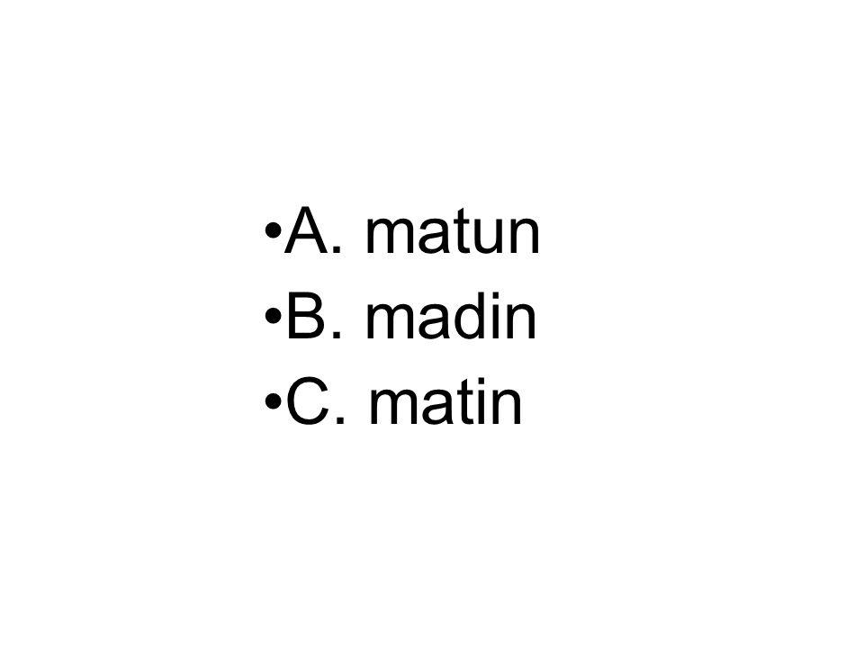 A. matun B. madin C. matin