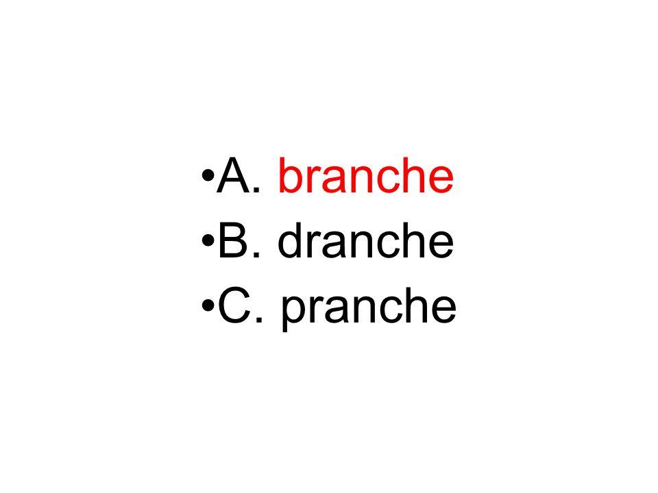 A. branche B. dranche C. pranche