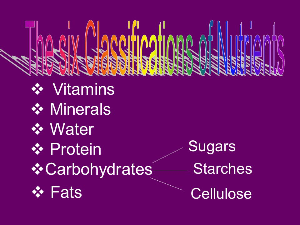 The six Classifications of Nutrients