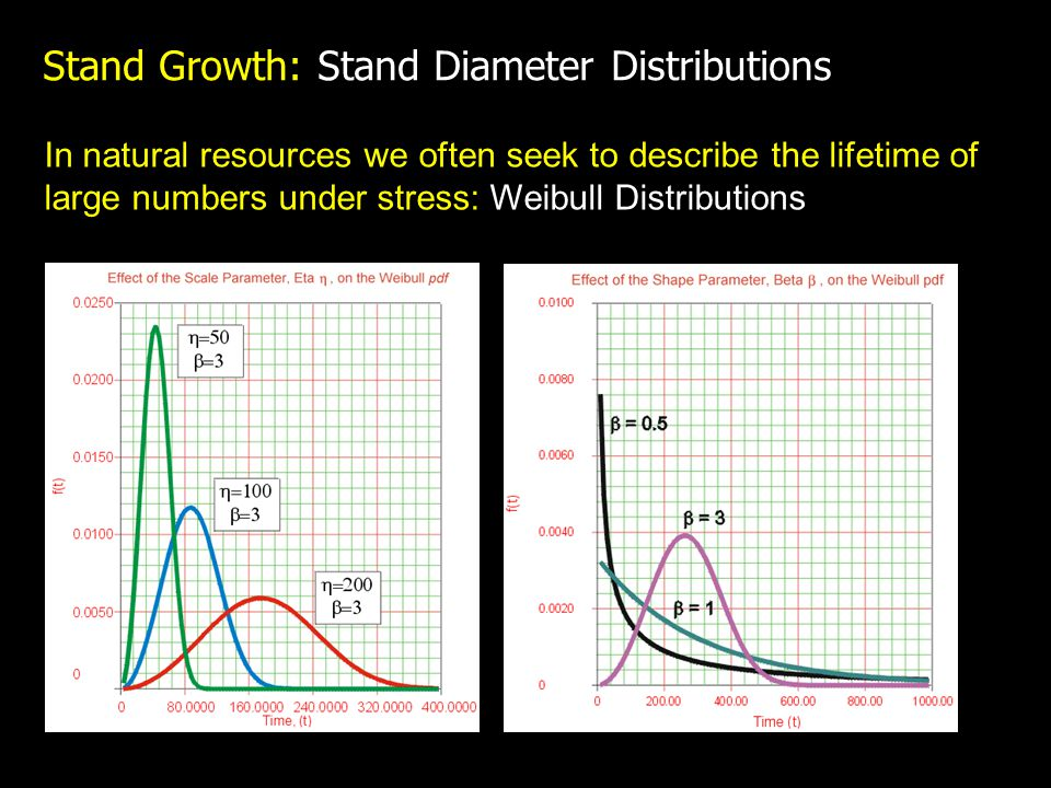 Stand Growth: Stand Diameter Distributions