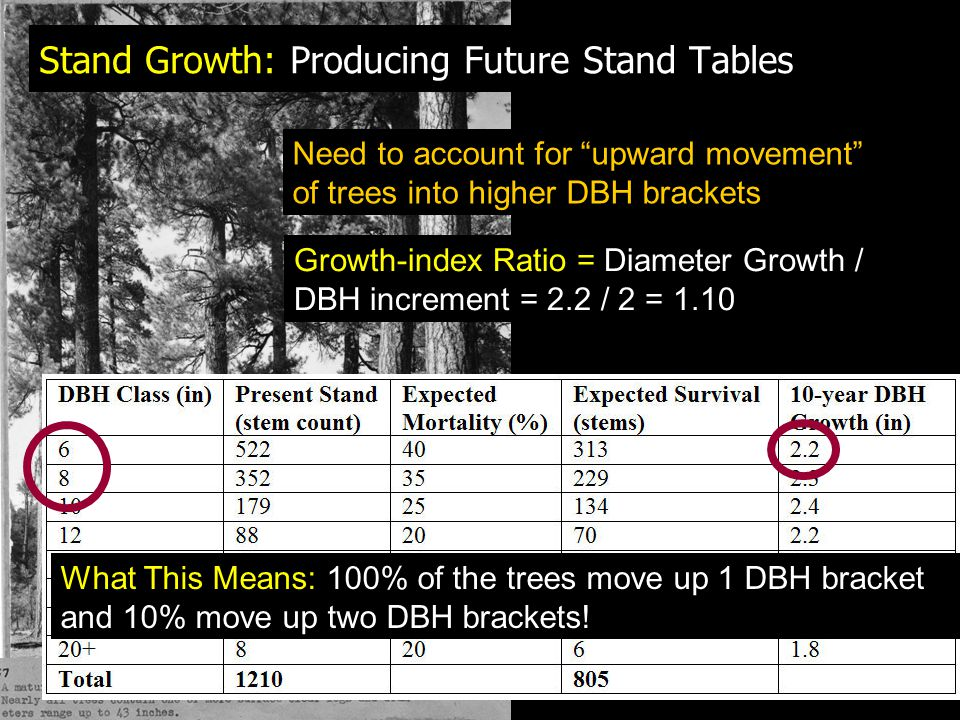 Stand Growth: Producing Future Stand Tables