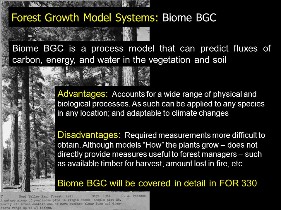 Forest Growth Model Systems: Biome BGC