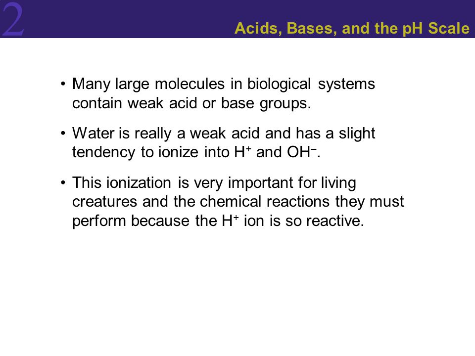Acids, Bases, and the pH Scale